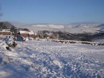 snow bower