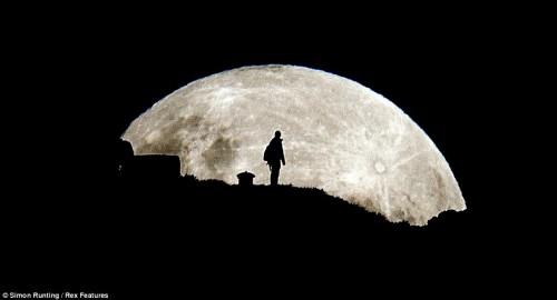 moon-sillouette