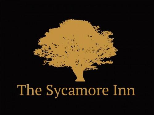 sycamore 1
