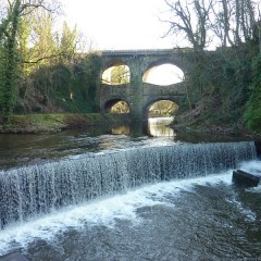 Torrs Hydro Open Day
