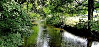 Disley & New Mills Angling Club