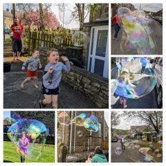 Lockdown Bubble Bliss