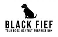 Black Fief Logo