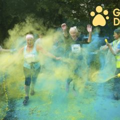 Guide Dogs – Fundraising Opportunity